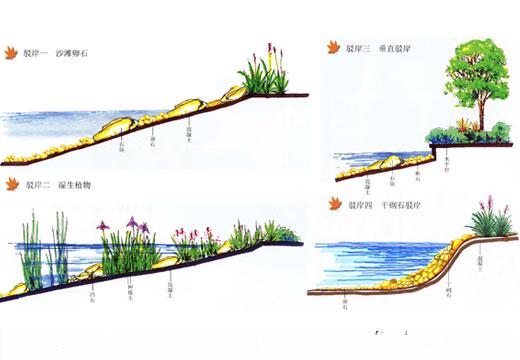 驳岸做法手绘