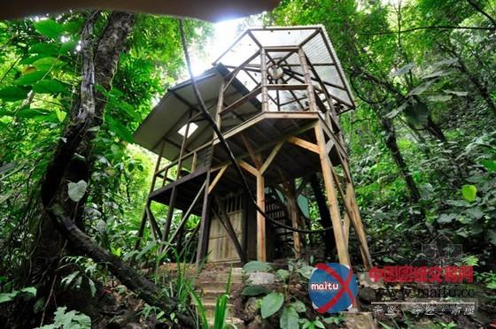 fincabellavista设计的可持续树屋社区