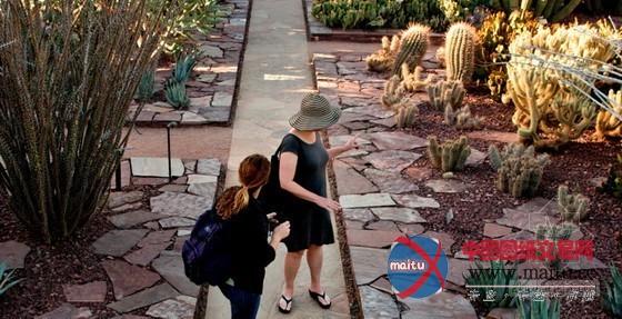 美国凤凰城沙漠植物园入口景观
