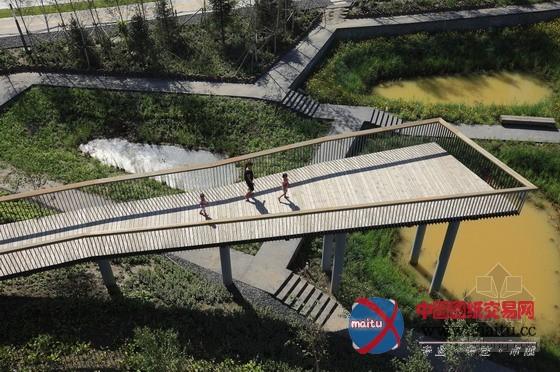 土人设计的中国哈尔滨群力新区湿地公园-园林景观