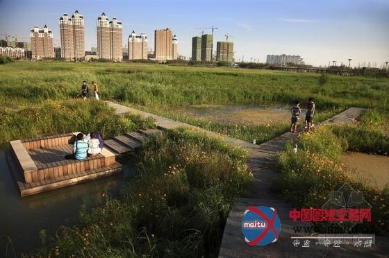 土人设计的中国哈尔滨群力新区湿地公园