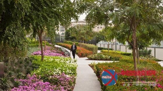 swa设计的迪拜哈利法塔摩天大楼公园-园林景观-中国