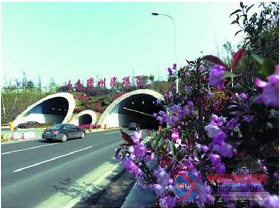 """青岛""""胶州湾海底隧道""""成功通过竣工验收"""